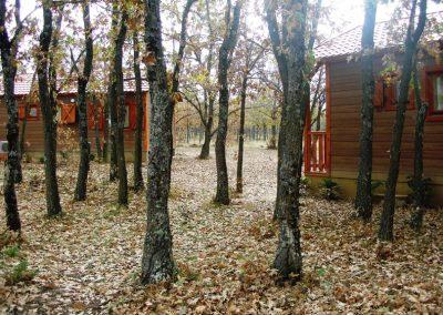 camping-riaza8
