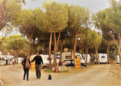 camping-riberduero-penafiel11