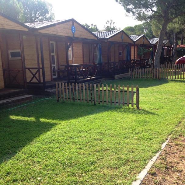 camping-riberduero-penafiel6