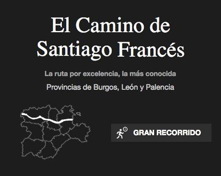 camino-santiago-frances-ruta