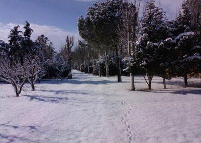camping-camino-santiago8