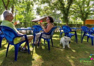 camping-perros-asecal