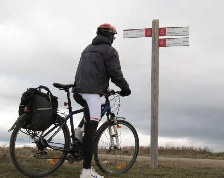 ruta-camino-cid4