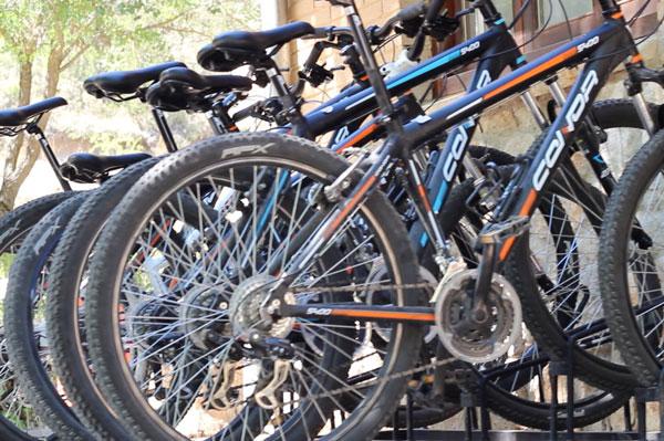 camping-canon-rio-lobos-Bicicletas-Canon-del-Rio-Lobos