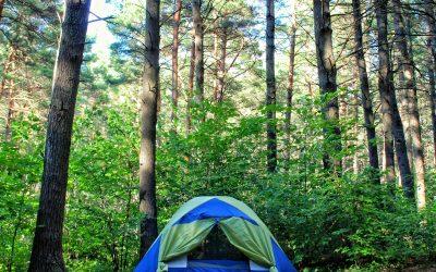 Asecal participa en la celebración del Día Nacional del Camping