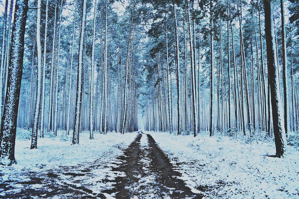 Actividades para combatir el frío en Castilla y León