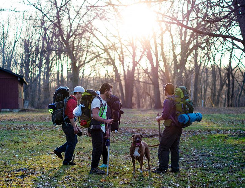 Camping dog friendly