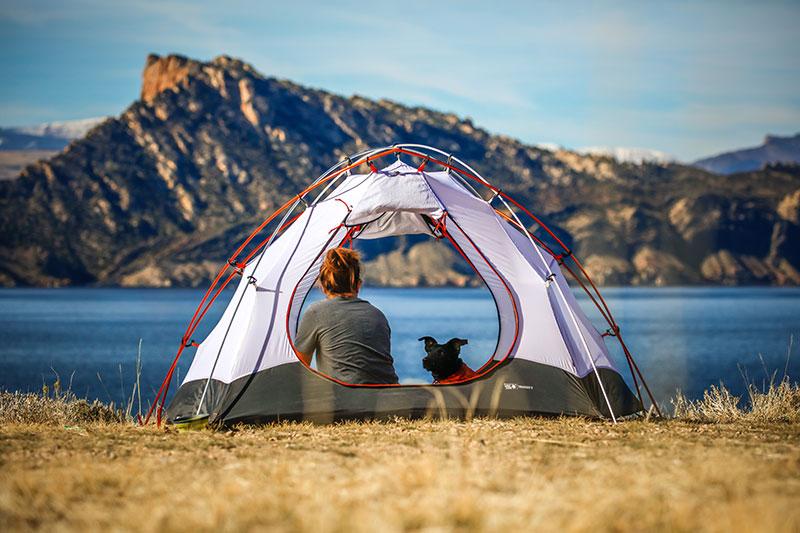De camping con perro, todo lo que debes saber