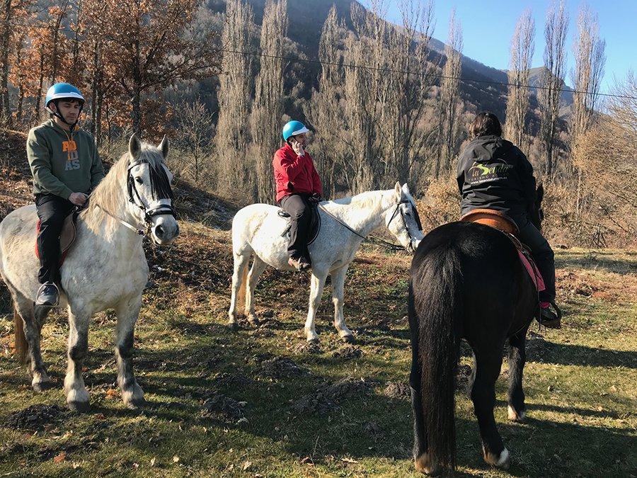 caballos-laciana-natura-leon