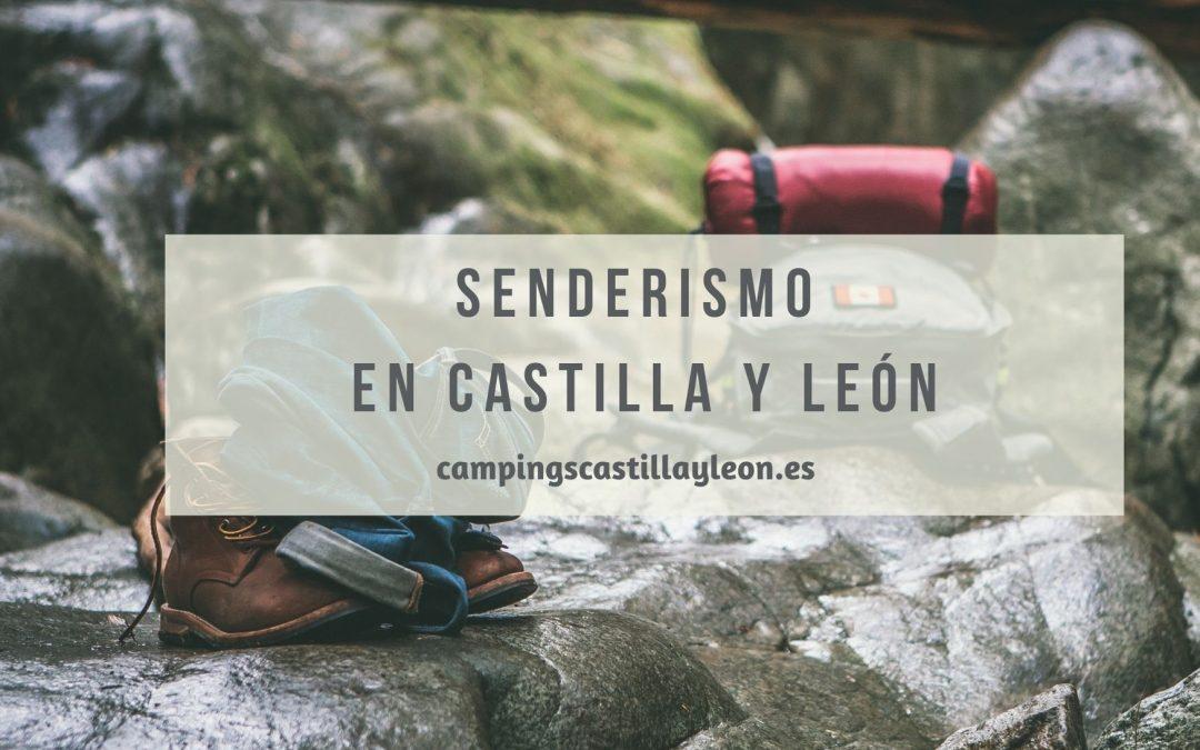 Senderismo en Castilla y León: Cómo disfrutar al máximo de la naturaleza