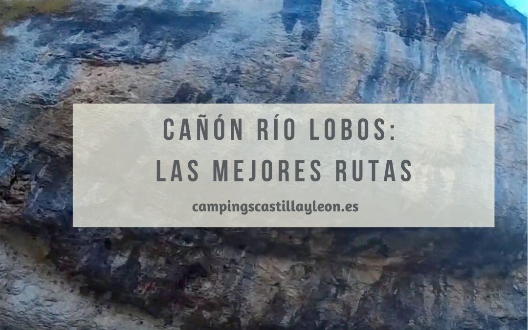 Cañón Río Lobos: Las mejores rutas